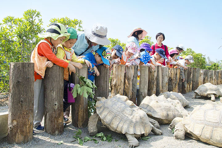 自然又溫馨的臺南護生教育園區,讓小動物安心生活